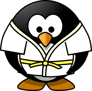 judokid